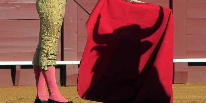 jurisrprurdencia registrro intelectual de la faena en los toros